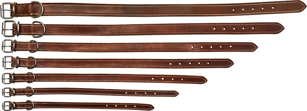 Collar Leather Basic Showmaster®