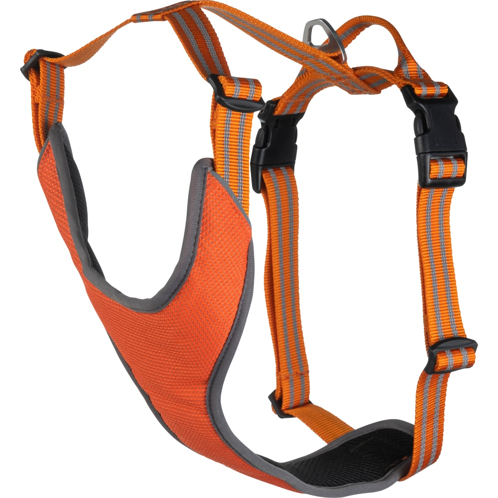 Dog harness  Sparta Showmaster®
