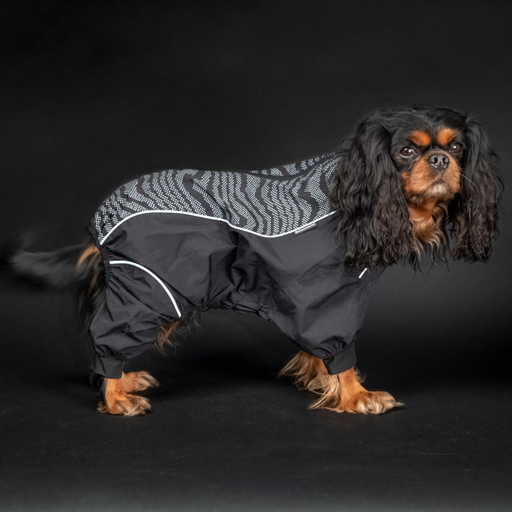 Dog overall  Activity Showmaster®