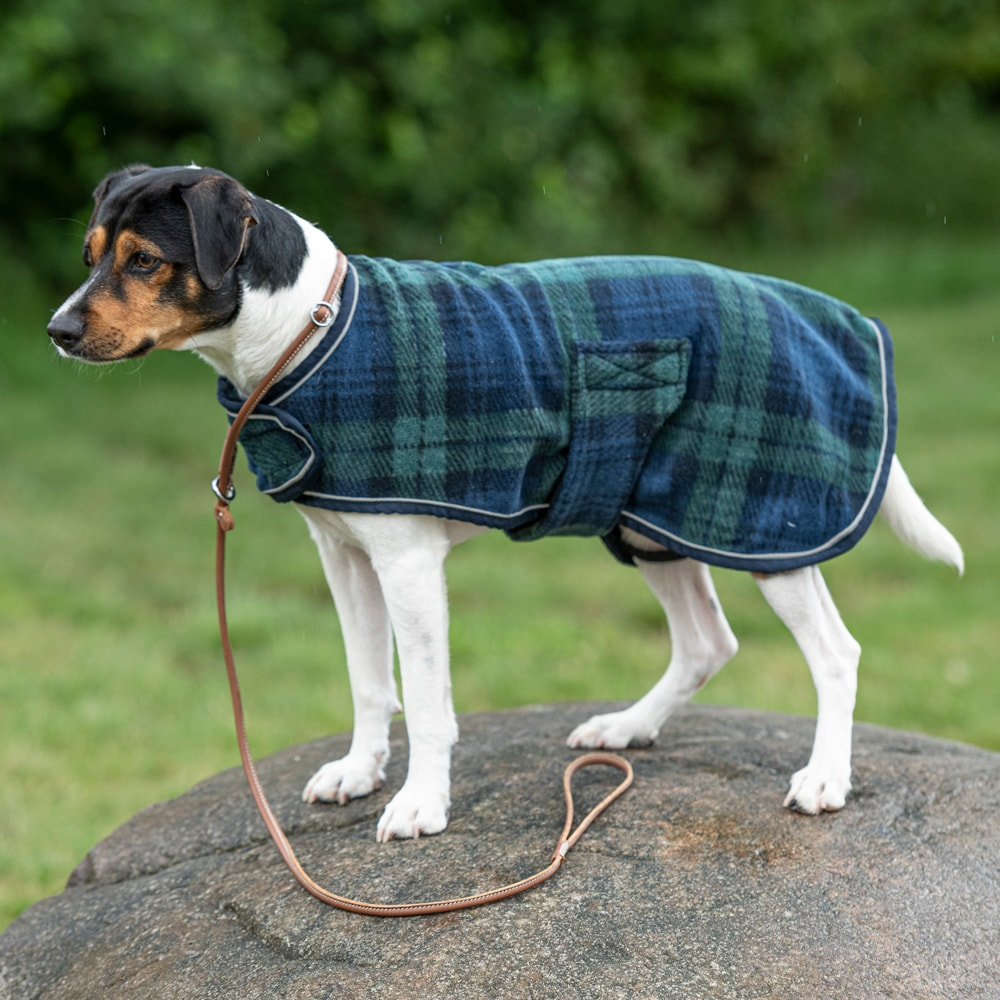 Dog rug Fleece Scotty Showmaster®