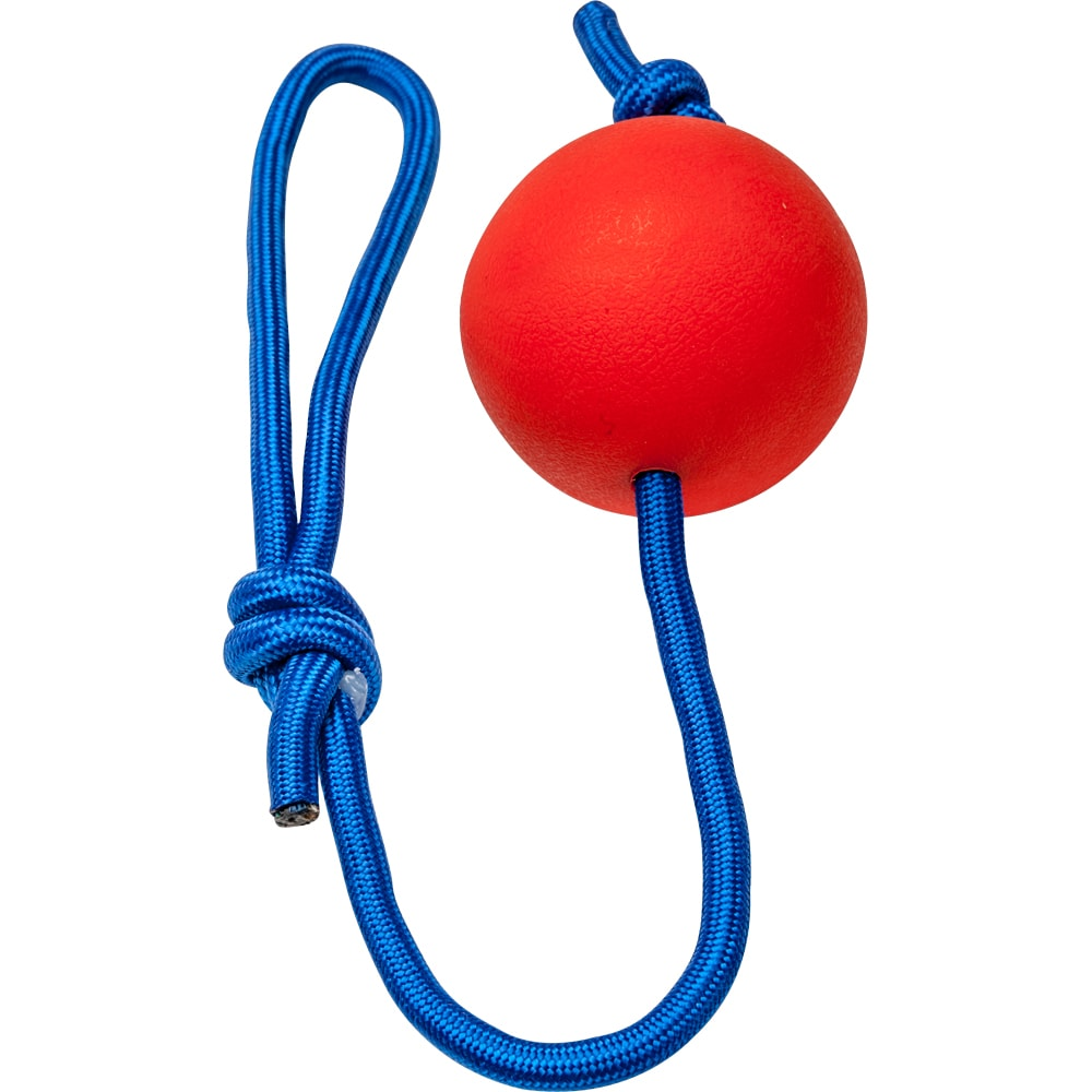 Throwing ball   Showmaster®