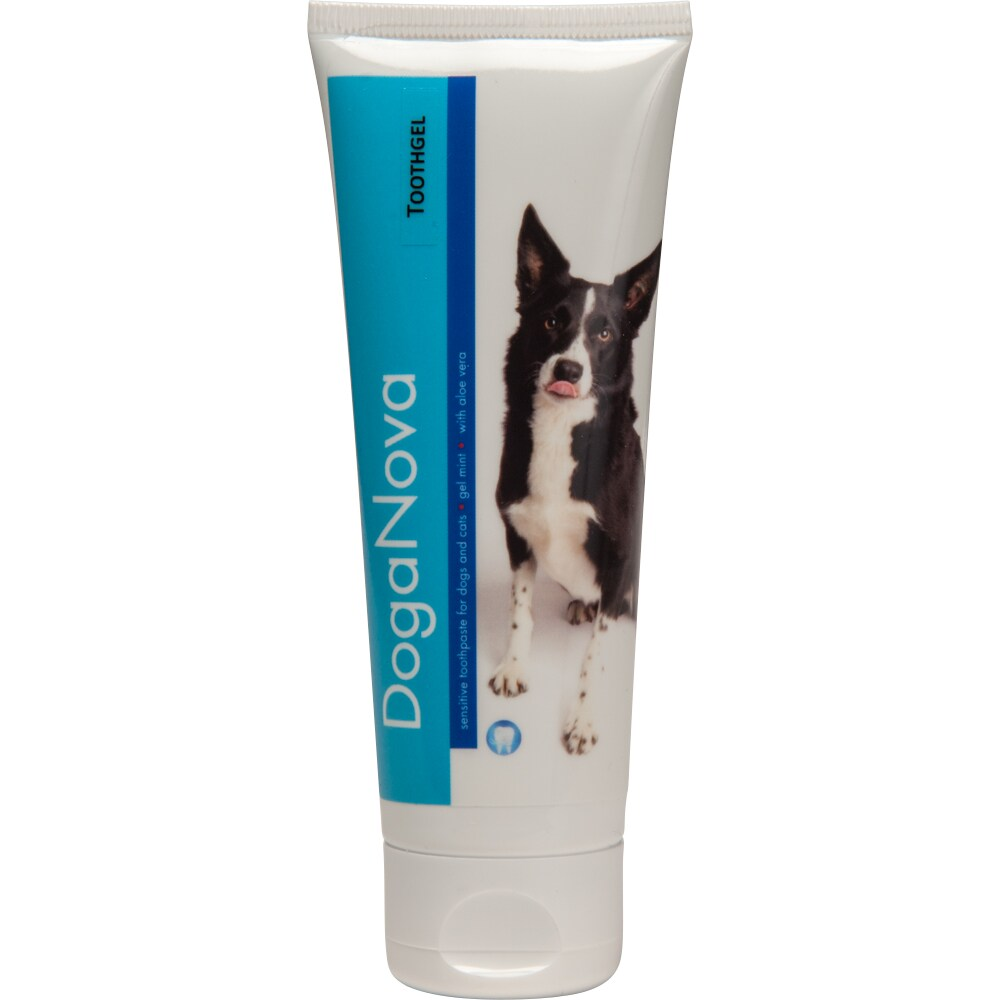 Toothpaste   Doganova