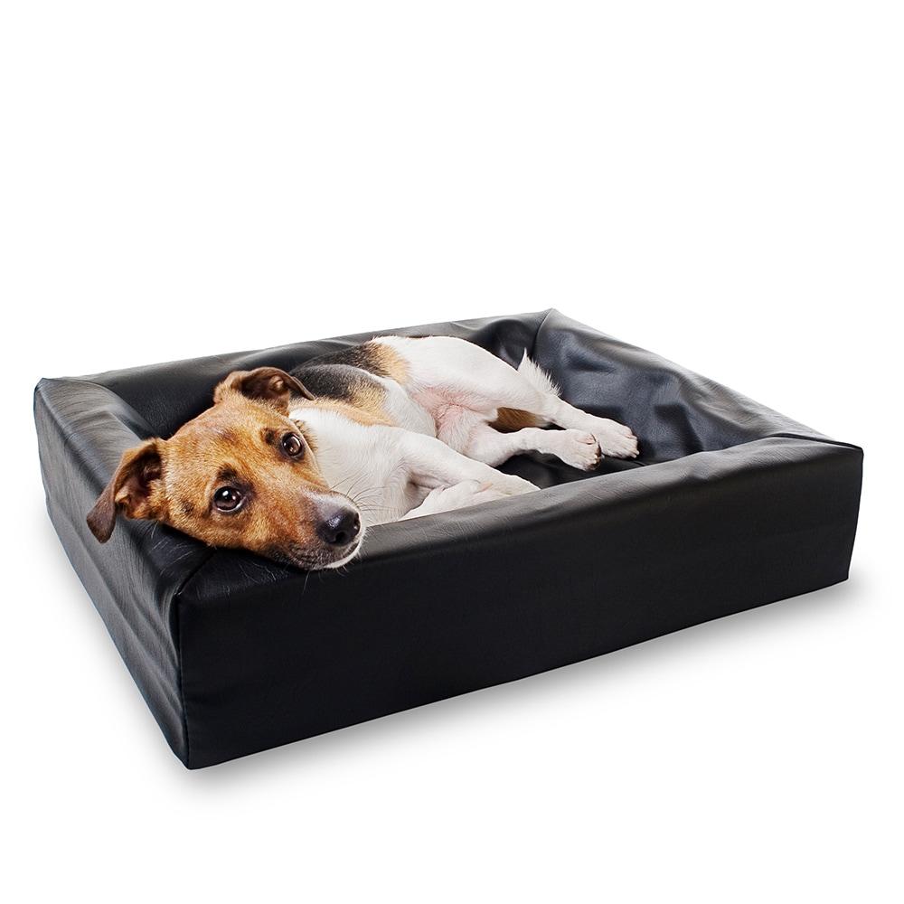 Dog bed  original BiaBed