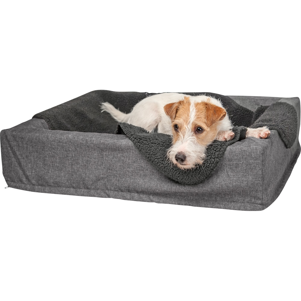 Dog blanket   Showmaster®