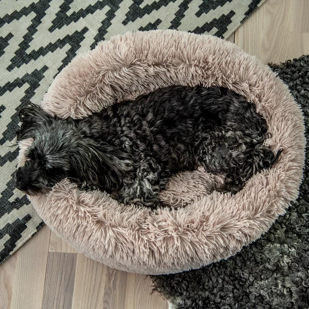Dog bed  Donut Showmaster®