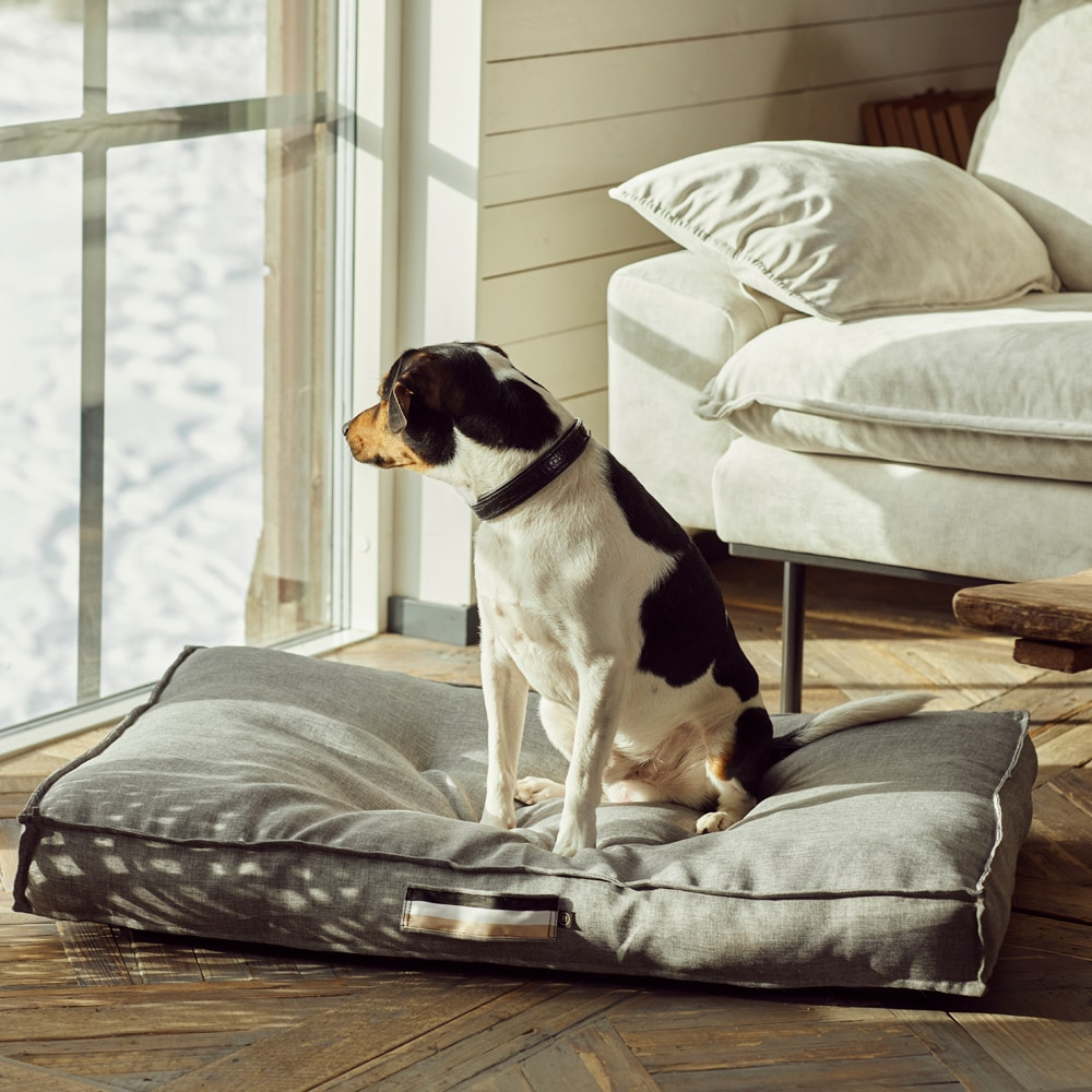 Dog bed  Luzzi JH Collection®