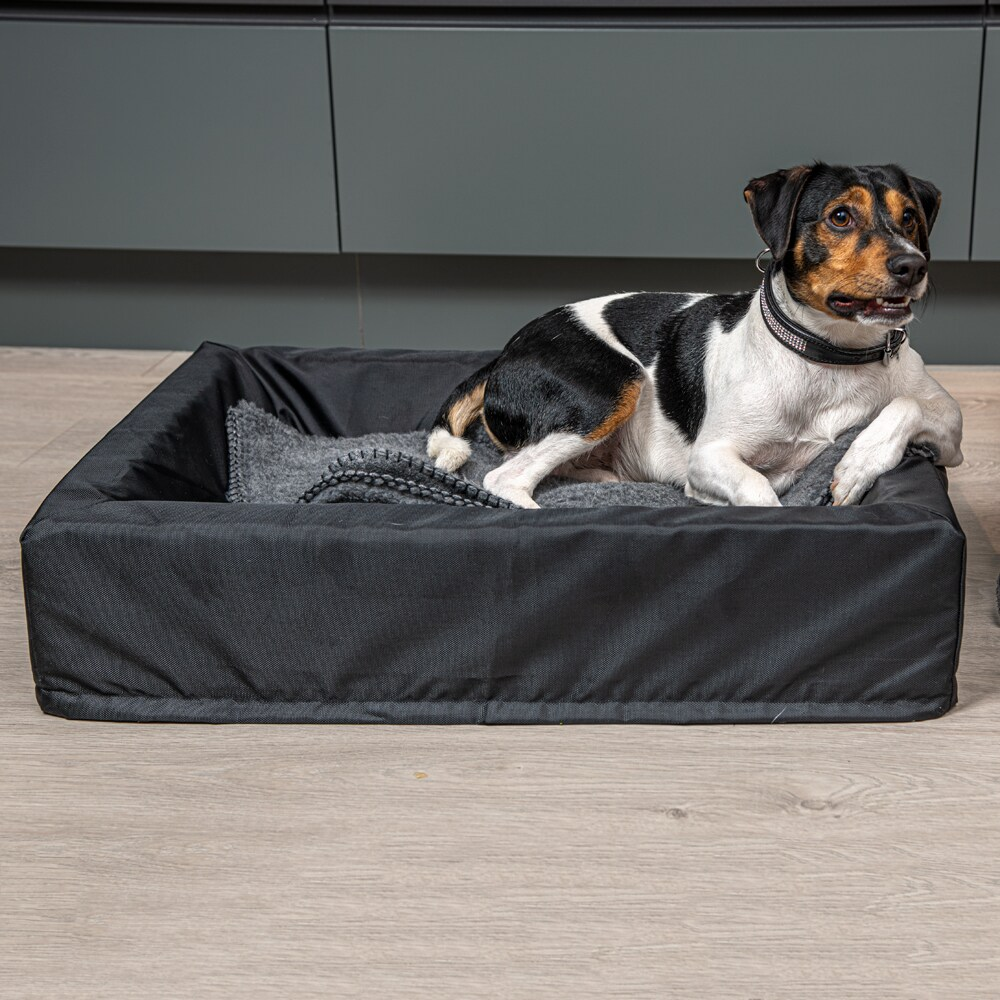 Dog bed  Nordic Showmaster®