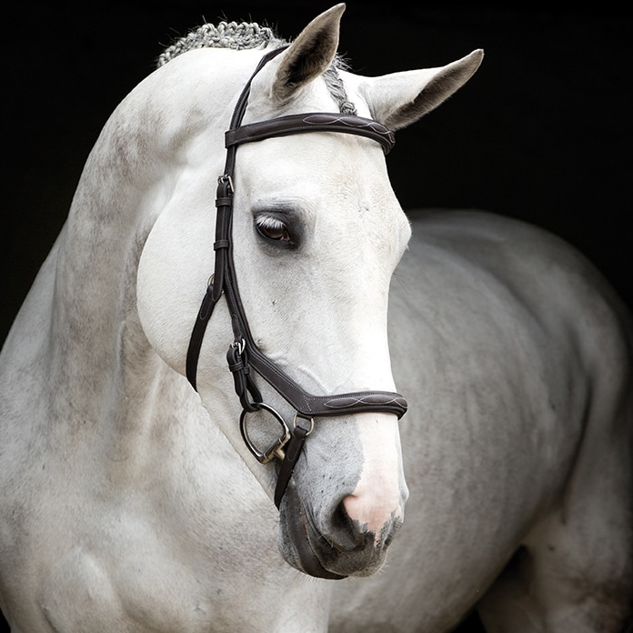 Bridles  Micklem® Deluxe Competition Horseware®
