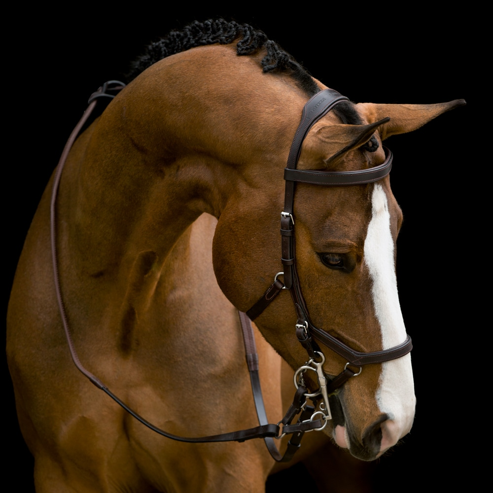Bridles  Micklem Competition Horseware®