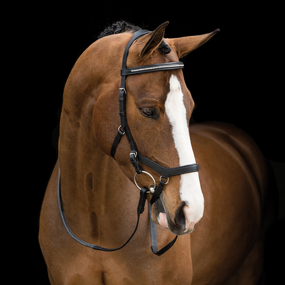 Bridles  Micklem® Diamante Competition Horseware®
