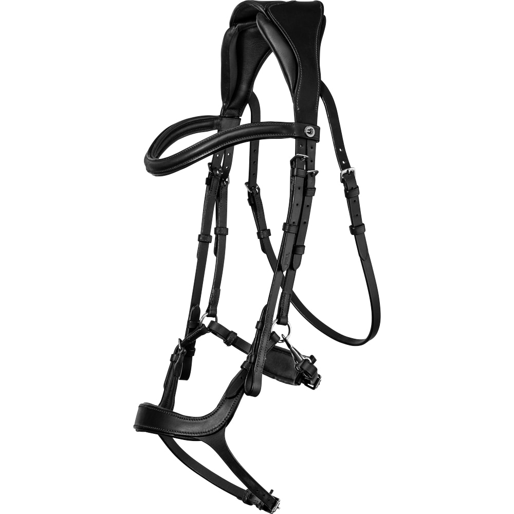 Bridles  Ashton Fairfield®