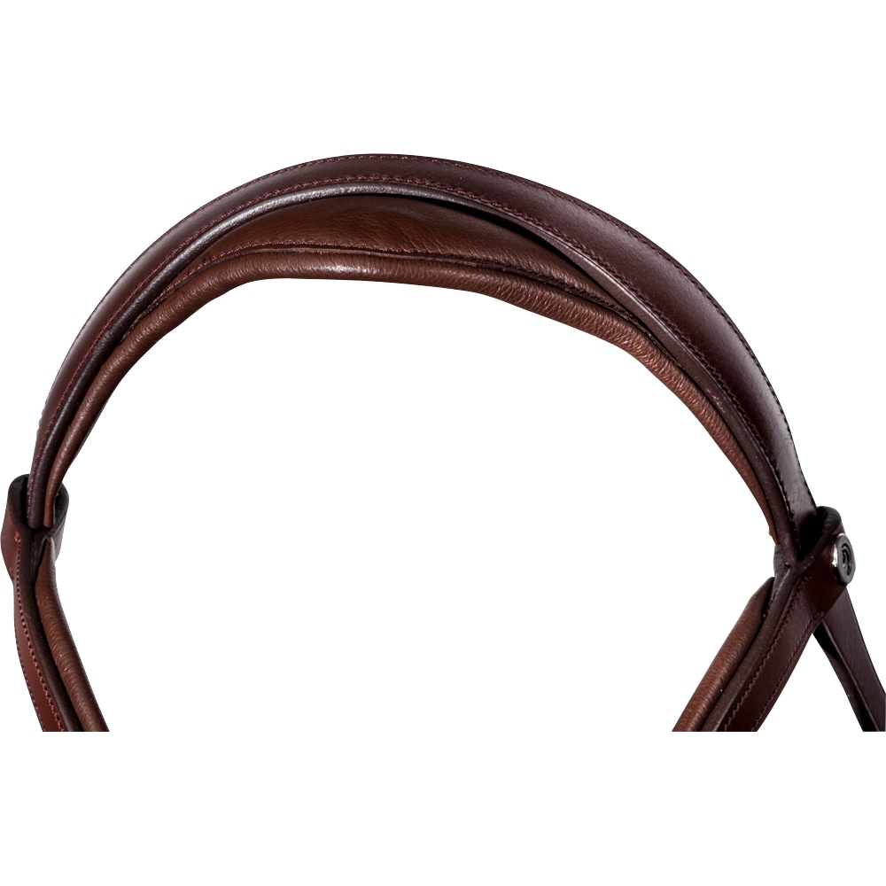 Bridles  Lingus Fairfield®