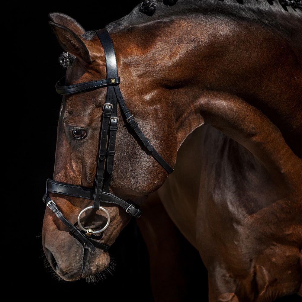 Combined noseband bridle  Modin JH Collection®