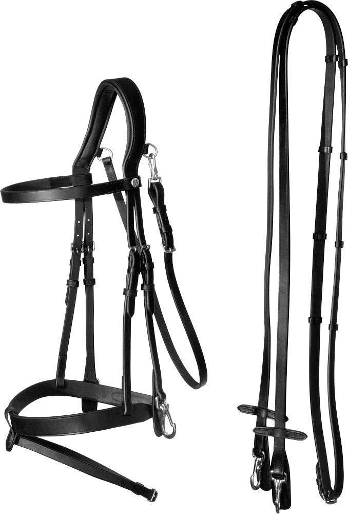Combined noseband bridle  Hunter Fairfield®