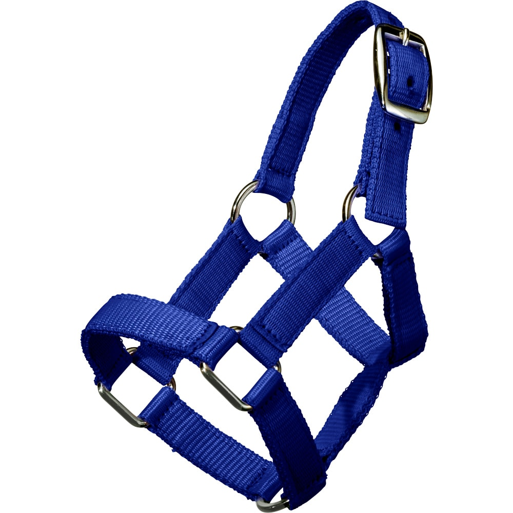 Mini foal halter   Fairfield®