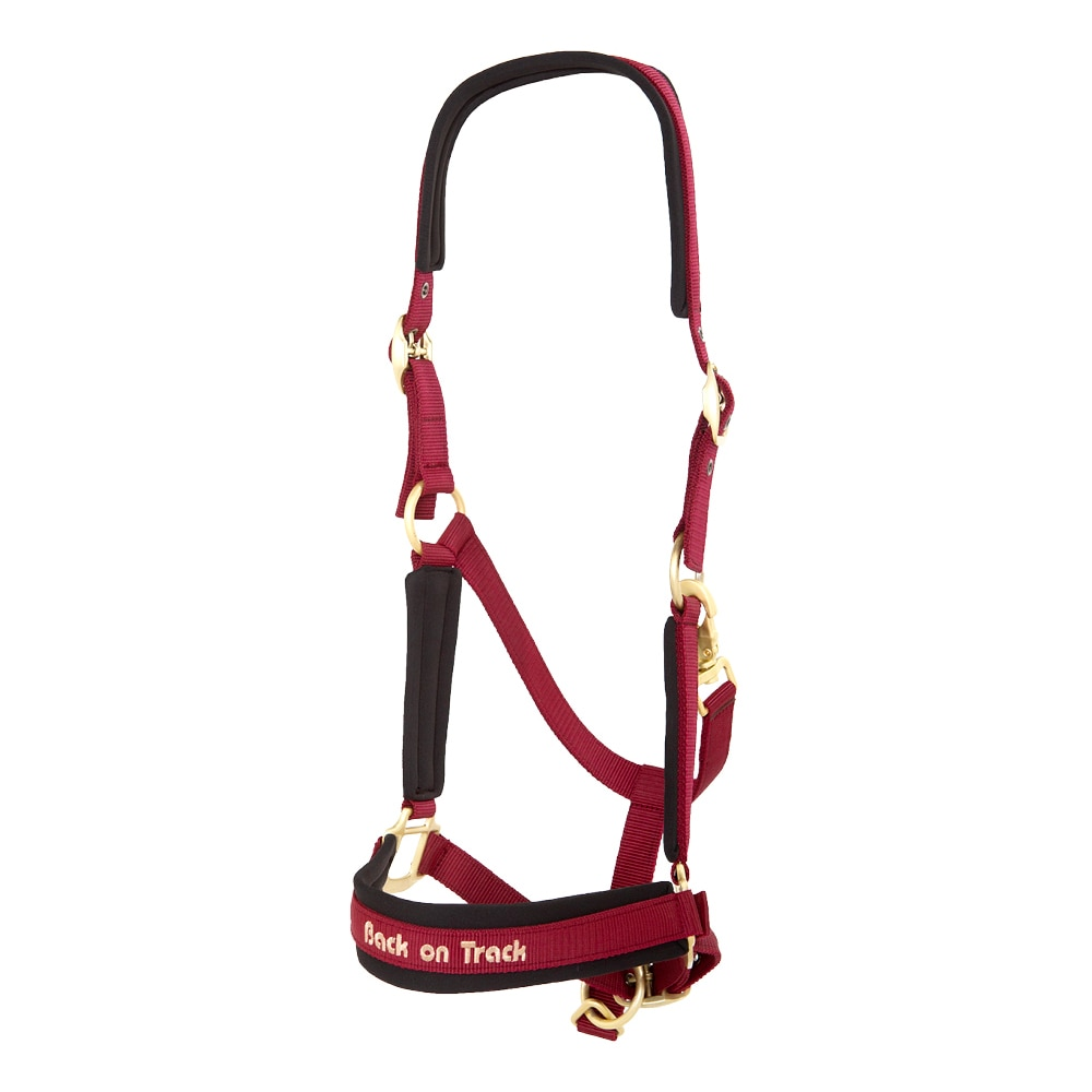 Halter  Werano Back on Track®
