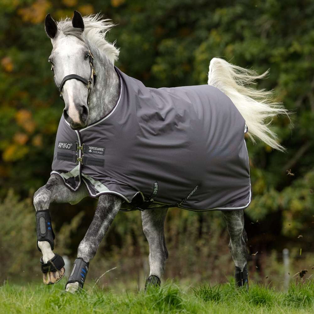 Turnout rug  Amigo Bravo Medium 250 Horseware®