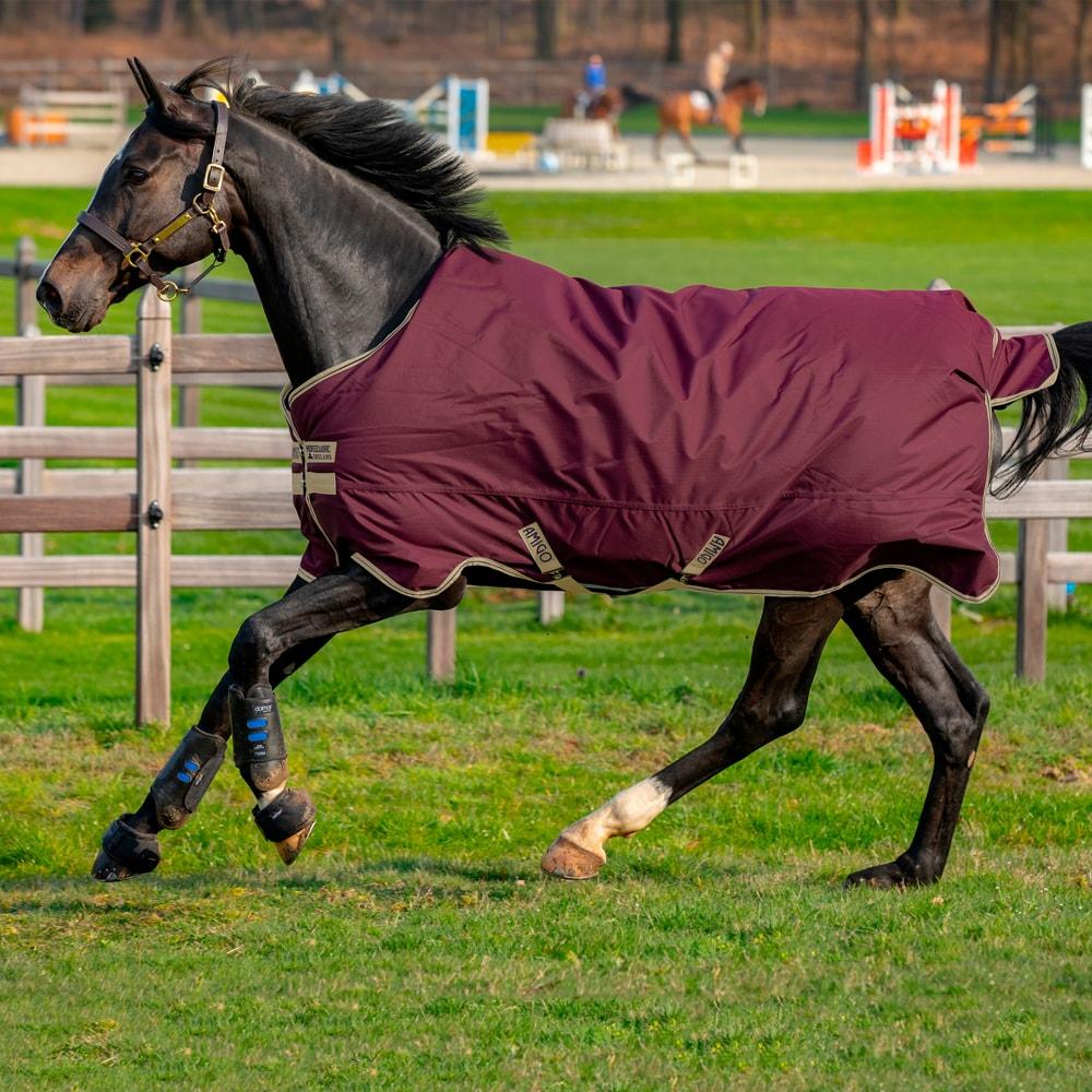 Rain rug  Amigo Hero Ripstop Lite Horseware®