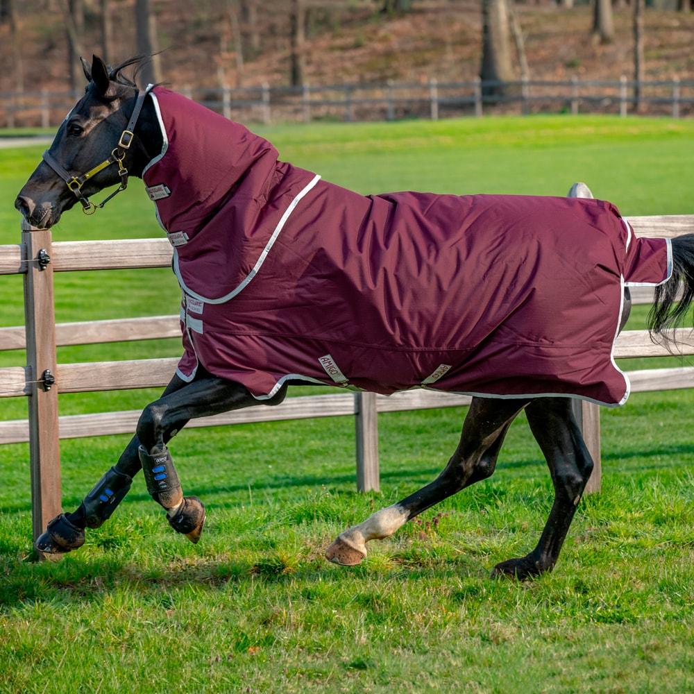 Turnout rug  Amigo Hero Ripstop Plus 200 Horseware®