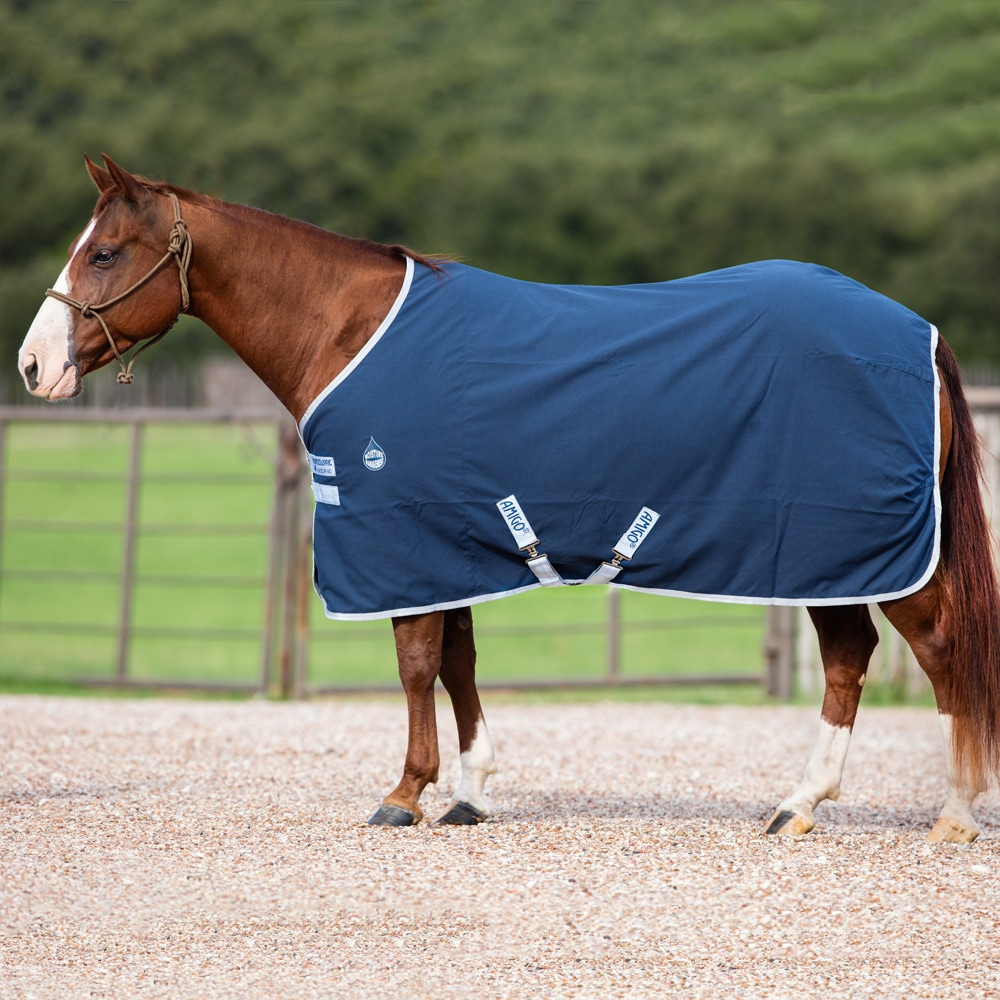 Stable rug  Amigo Stable Sheet Horseware®
