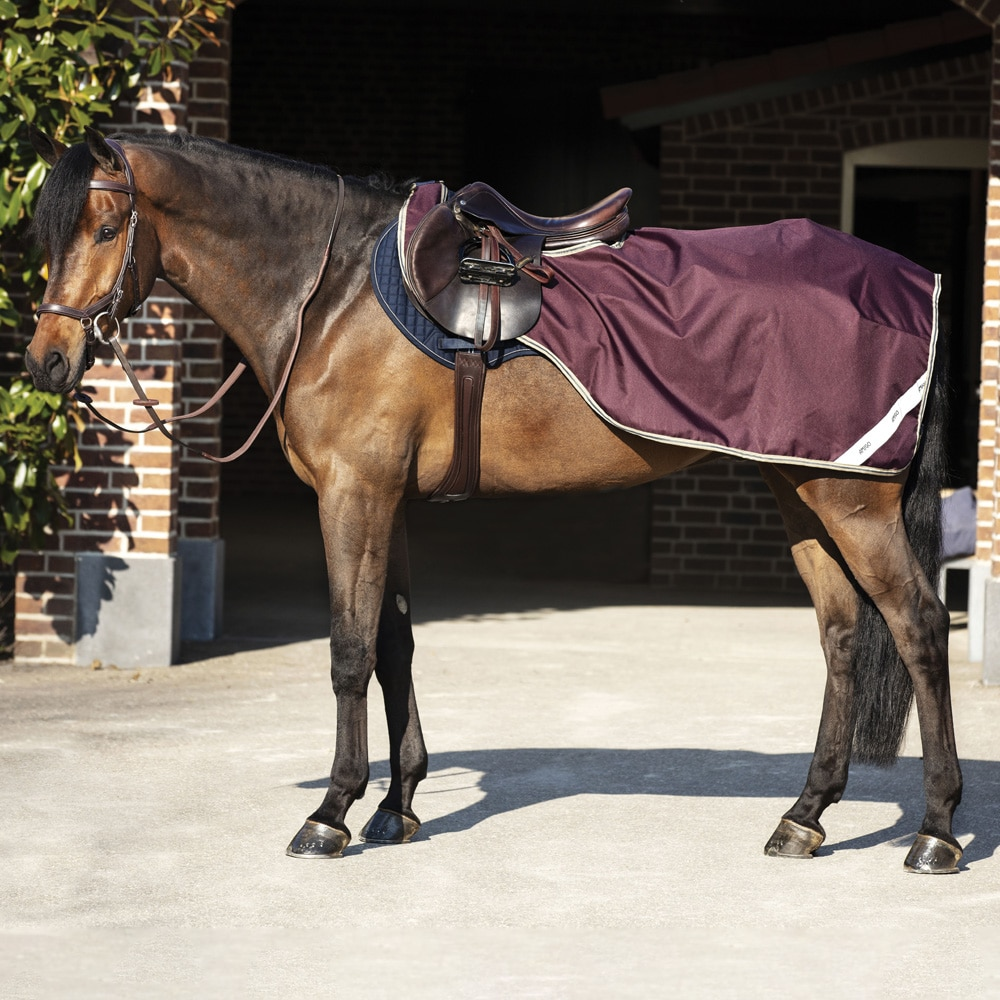 Riding rug  Amigo Competition Sheet Horseware®