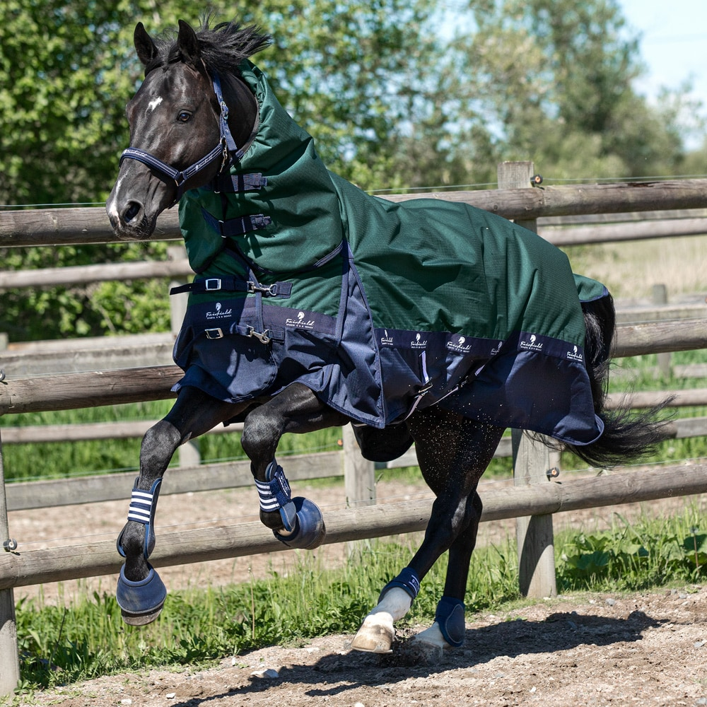 Turnout rug  Orion 2.0 Fairfield®