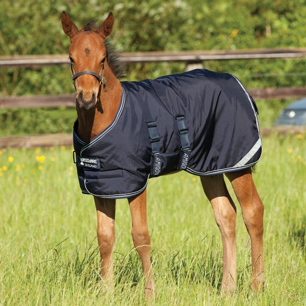 Foal rug  Amigo Foal Horseware®