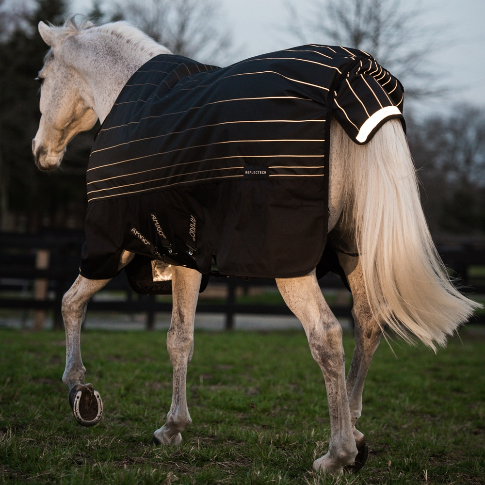 Winter rug  Amigo Bravo Reflectech Plus 250 Horseware®