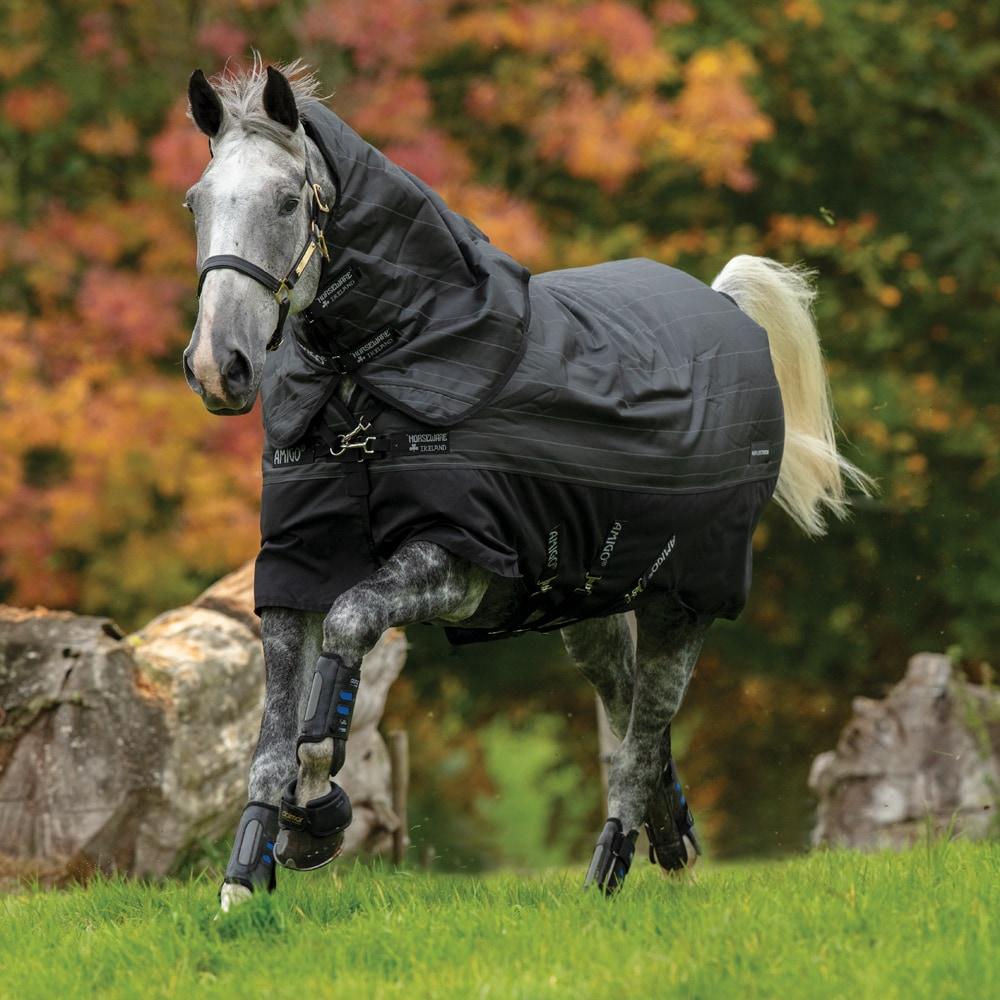 Winter rug  Amigo Bravo Reflectech Plus 250 Horseware®