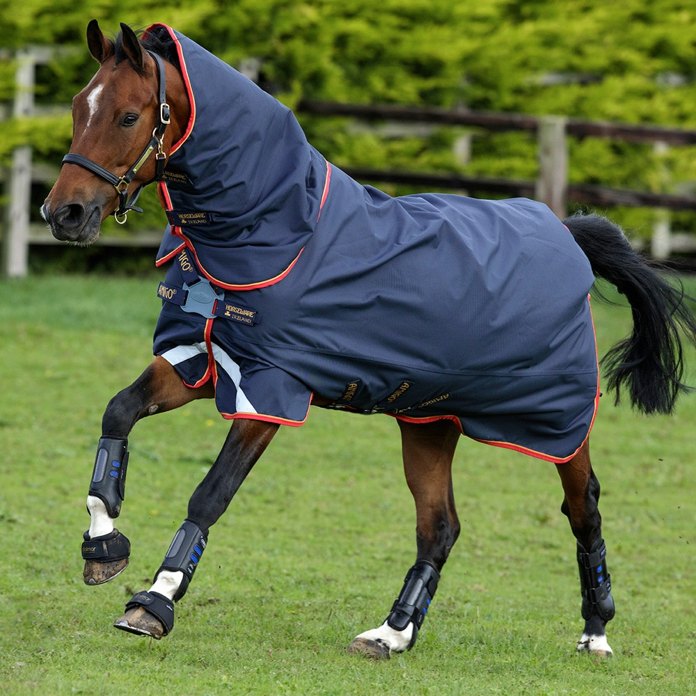 Turnout rug  Amigo Bravo 12 Plus 100 Horseware®