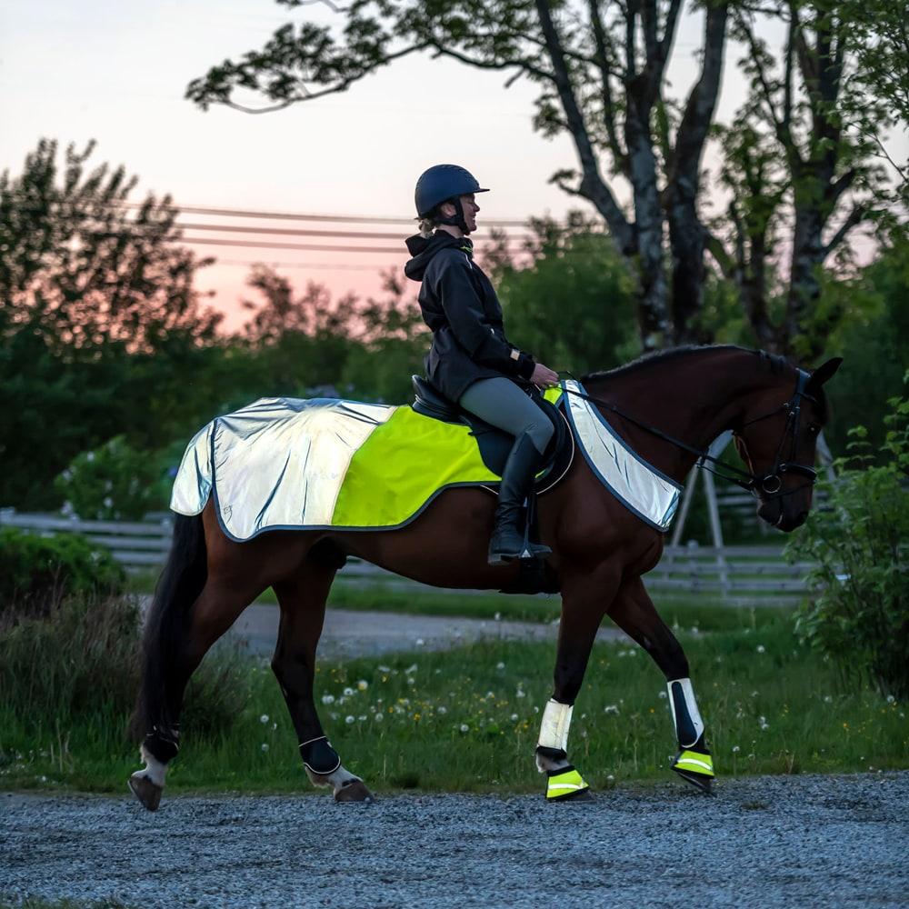 Reflective rug  Bright rider Fairfield®