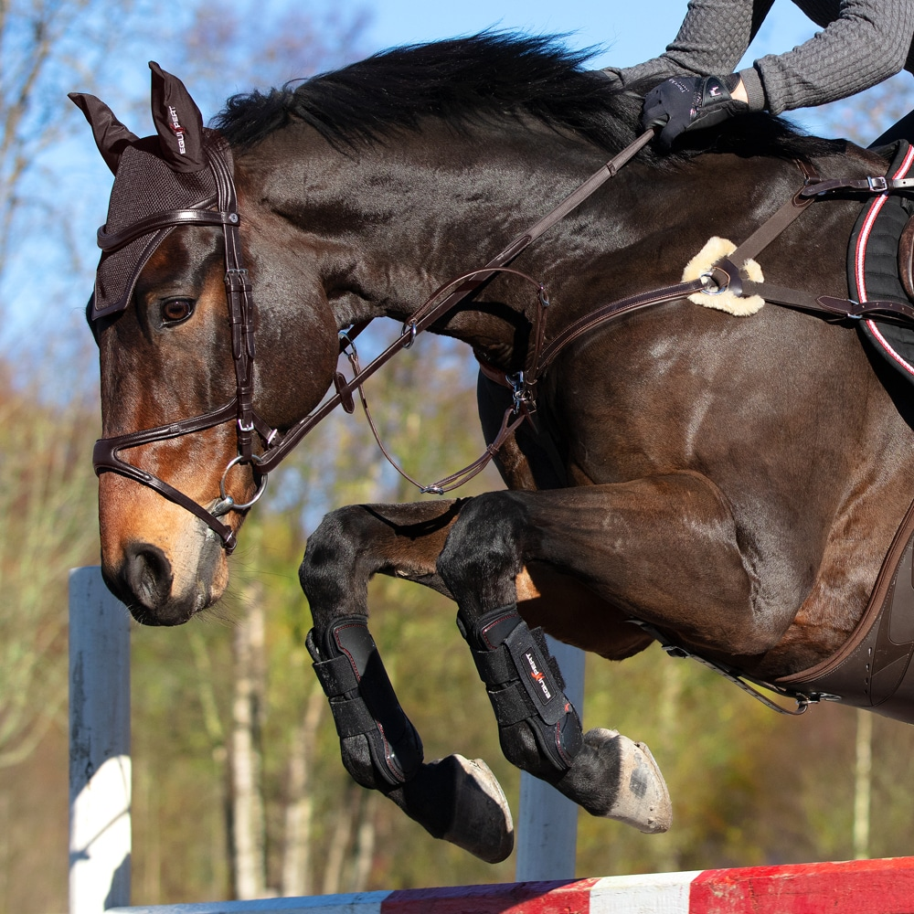 Tendon boot  Endevour EquiXpert®