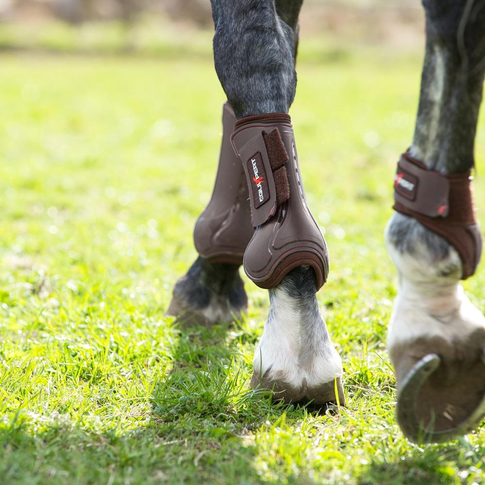 Fetlock boots  Endevour EquiXpert®