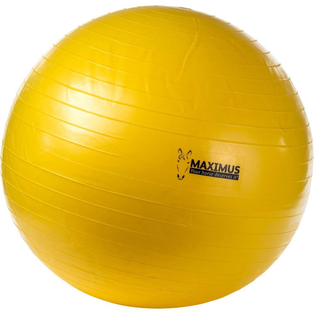 Play ball  Maximus Ball