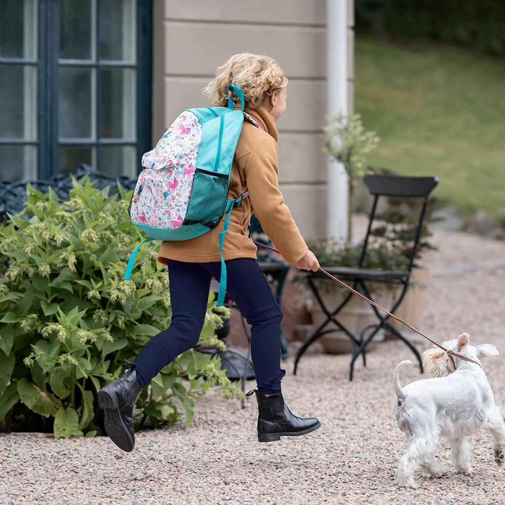 Backpack  Aurora